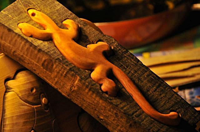 Lézard margouillat gecko