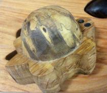 Lentement, la tortue parcourt son chemin
