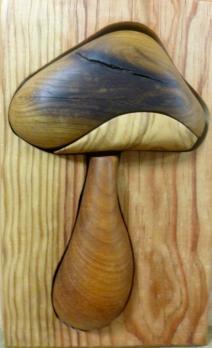 p1090131-champignon.jpg